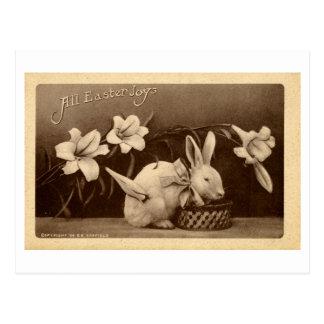 Pascua Postcard (1909) Tarjeta Postal
