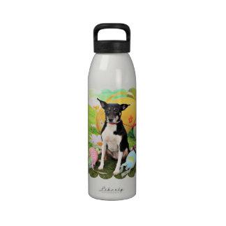 Pascua - rata Terrier - Georgia Botallas De Agua