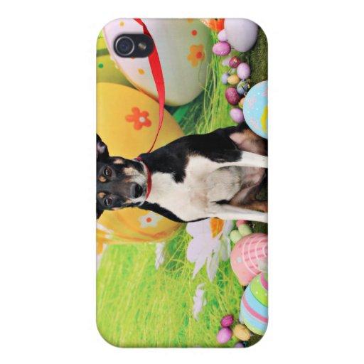 Pascua - rata Terrier - Georgia iPhone 4 Carcasa