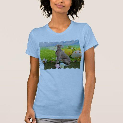 Pascua - Weimaraner - Nevaeh Camisetas