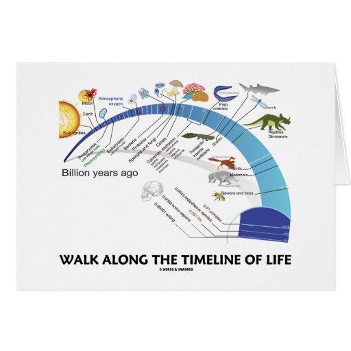 Paseo a lo largo de la cronología de la evolución  tarjeta de felicitación