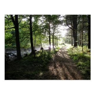 """""""Paseo cerca postal de Northumberland del río"""""""