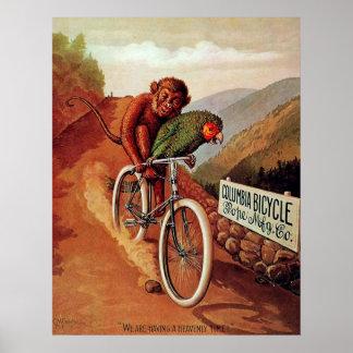 Paseo chistoso de la bicicleta del loro del mono d poster