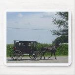 Paseo con errores de Amish Tapetes De Ratones