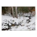 Paseo Crad del invierno Tarjetas