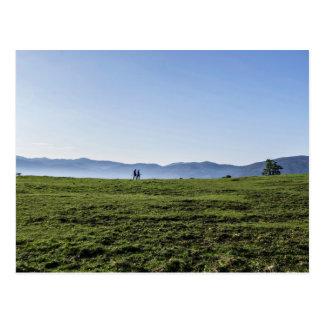 Paseo de dos personas a través de un campo verde postales