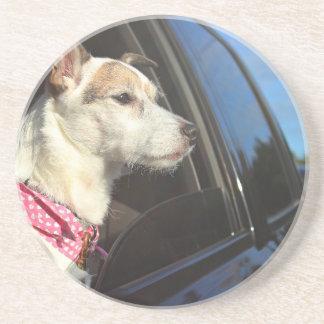 Paseo de Jack Russell Terrier al práctico de costa Posavasos Diseño