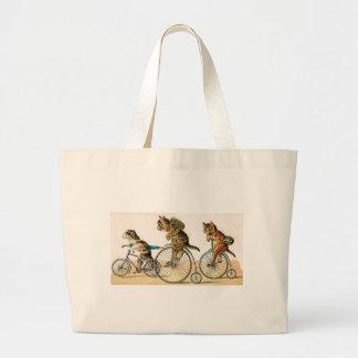 Paseo de la bicicleta bolsa