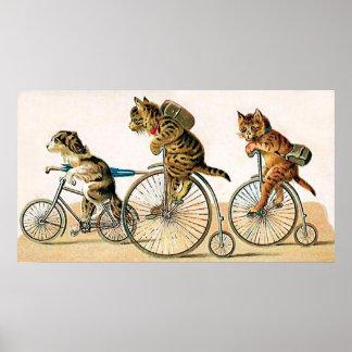 Paseo de la bicicleta póster