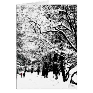 Paseo de la nieve Romancing la nieve