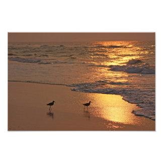 Paseo de la playa de la salida del sol arte fotográfico