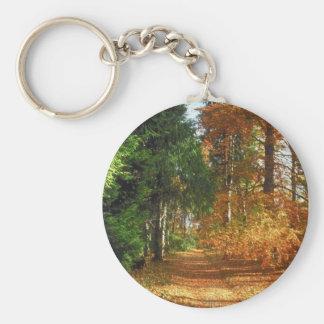 Paseo del bosque del otoño llaveros