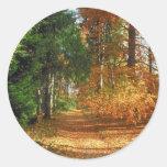 Paseo del bosque del otoño pegatina