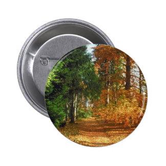 Paseo del bosque del otoño pin