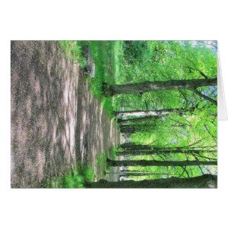 Paseo del bosque felicitacion