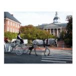 Paseo del caballo y del carro de Annapolis Tarjeta Postal