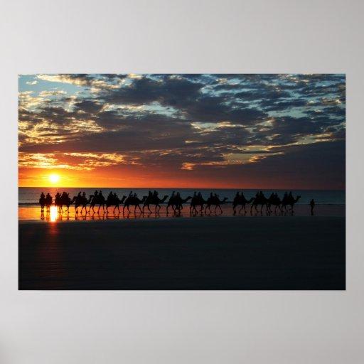 Paseo del camello de la puesta del sol, Broome, Au Impresiones