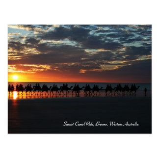 Paseo del camello de la puesta del sol, Broome, Au Postales
