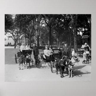 Paseo del carro de la cabra, 1900s tempranos impresiones