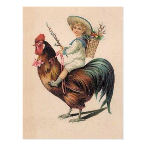 Paseo del gallo del vintage postal