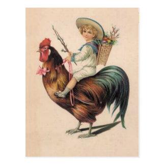 Paseo del gallo del vintage postales