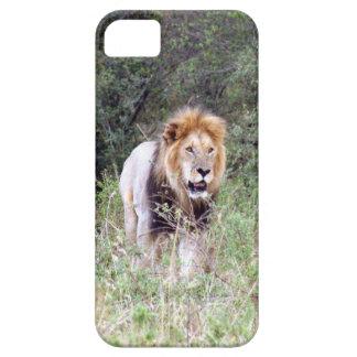 paseo del león iPhone 5 carcasas