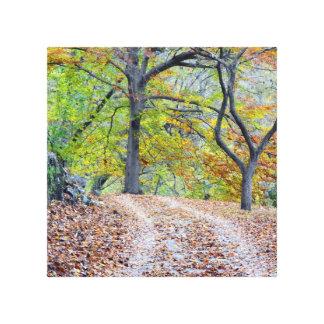 Paseo del otoño lona envuelta para galerias
