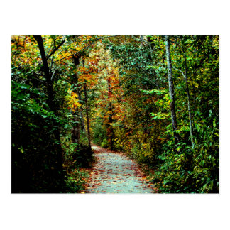 Paseo del otoño tarjetas postales