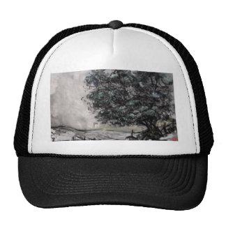 Paseo del país en carbón de leña/casquillo en colo gorras