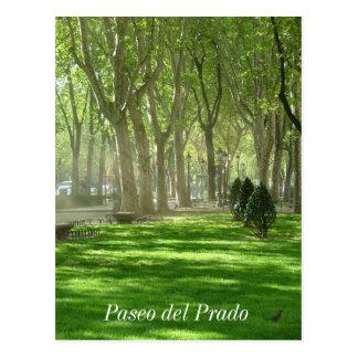 Paseo del Prado Tarjetas Postales