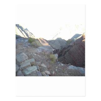 Paseo del sur de la mula del parque nacional del G Tarjetas Postales