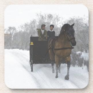 Paseo del trineo del invierno posavaso