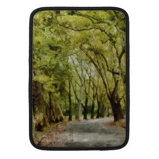 Paseo en la pintura del parque funda macbook air