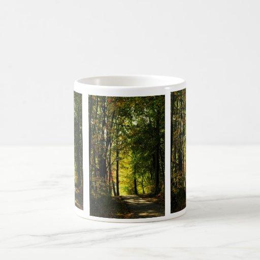 Paseo en la taza de maderas
