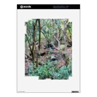 Paseo en las maderas iPad 2 calcomanías