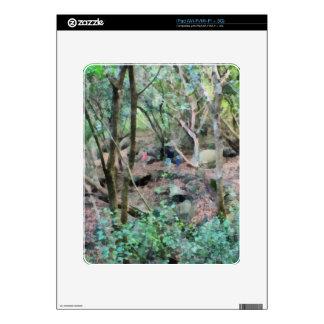 Paseo en las maderas skins para iPad