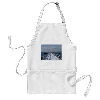 Paseo marítimo Nevado Delantales
