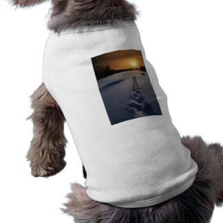 Paseo solo de la nieve camiseta de perrito