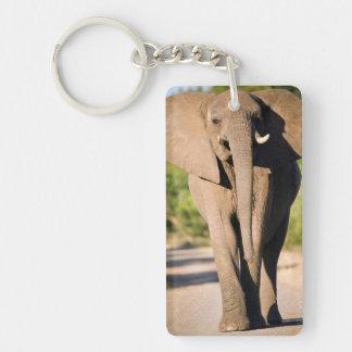 Paseos de un elefante africano (Loxodonta Llavero Rectangular Acrílico A Doble Cara