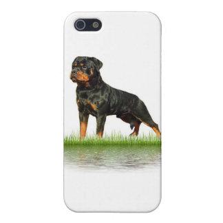 Pasha Earl Antonius iPhone SE/5/5s Cover
