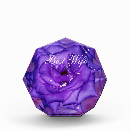 Pasión color de rosa púrpura