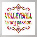 Pasión del voleibol posters