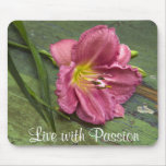 Pasión rosada Mousepad de la flor del Daylily de l Tapete De Ratones