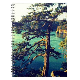 Paso azotado por el viento del engaño del ~ del cuadernos