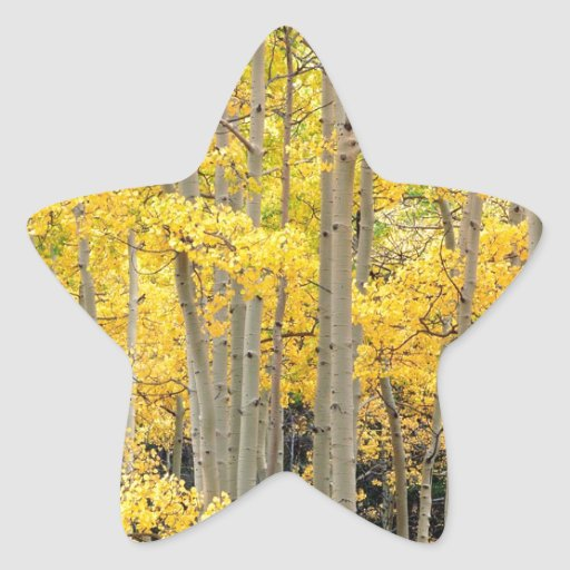 Paso Colorado de Kenosha de los álamos tembloses Calcomania Forma De Estrella