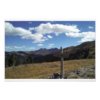 Paso Colorado de la perdiz nival Fotografía