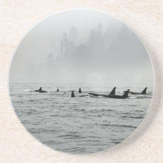 Paso de ballenas posavasos de arenisca