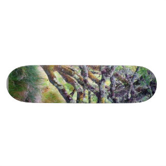 Paso de Glengesh en el árbol viejo de Irlanda Tablas De Skate