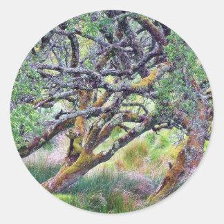 Paso de Glengesh en el árbol viejo de Irlanda Etiqueta
