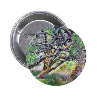 Paso de Glengesh en el árbol viejo de Irlanda Pins
